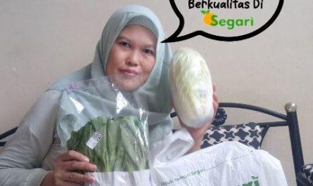 Belanja Sayur Online Segar Dan Berkualitas Di Segari.id